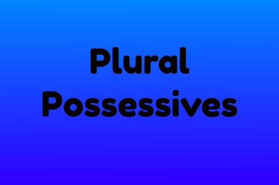 what are plural possessives?